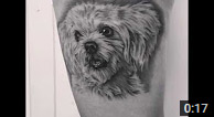 Zindy Dog Tattoo Portrait