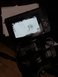 Canon M10 Drawing Video Zindy