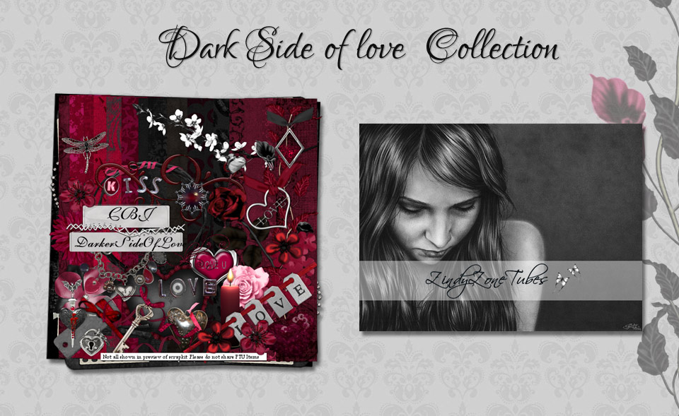 Dark side of love Collection